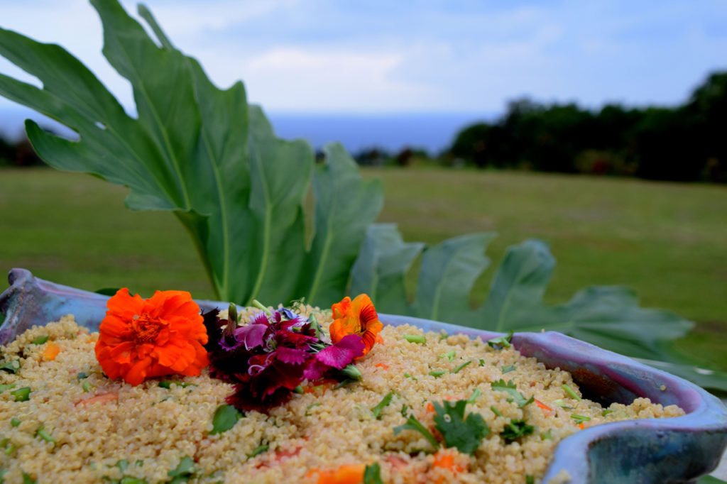 Farm To Table Dining at Ahimsa Sanctuary Farm